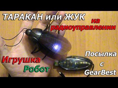 Таракан или жук игрушка робот на радиоуправлении Посылка с GearBest