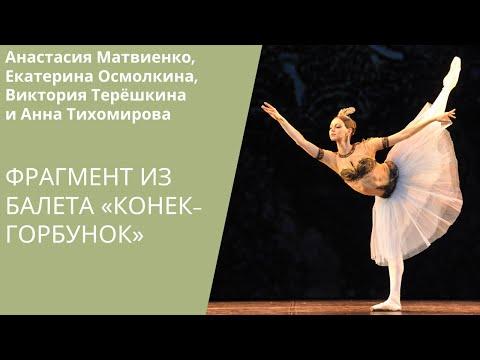 Pas de quatre 'Animated Frescoes' / Оживленные фрески из балета «Конек-Горбунок»