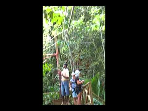 Travel and Tourism Zipling in Saint Lucia  Lesser Antilles