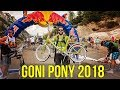 Red Bull Goni Pony Race 2018