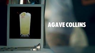 видео Agave MIXED (Агава) - Суккуленты и каудексные  - Интернет-магазин - Адениум дома: от семян до растений. Выращивание и уход.