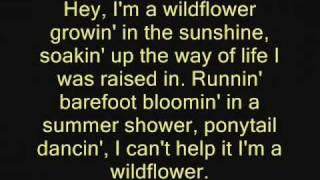 The JaneDear Girls- Wildflower lyrics