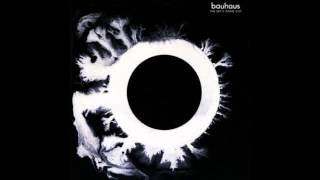 Watch Bauhaus Swing The Heartache video