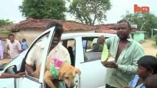 Girl marries dog بنت تتزوج من كلب