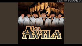 Los Avila 2020 - Puros Corridos Fregones Pa'Pistear🔥💣🍺🎷