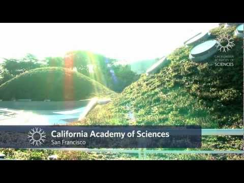 Travel to California Academy of Sciences