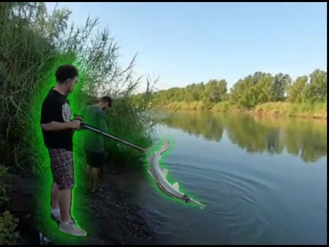 Rio Grande River (Bank Fishing)