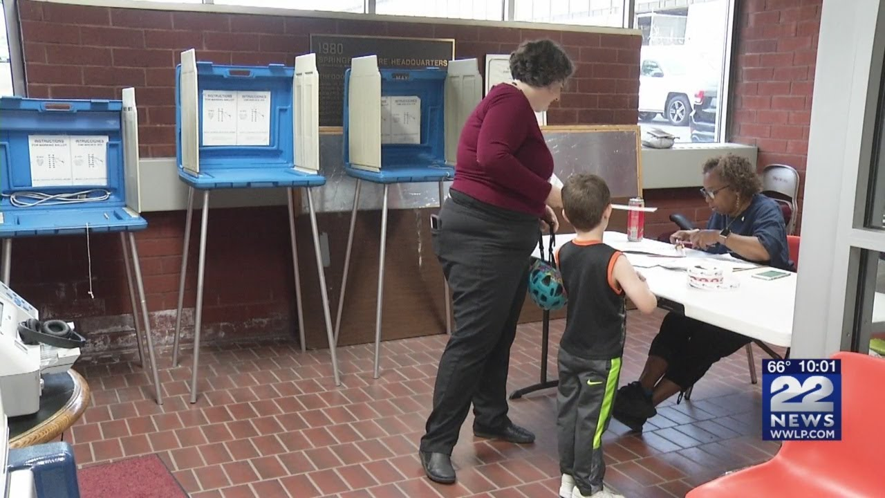 Springfield preliminary election results