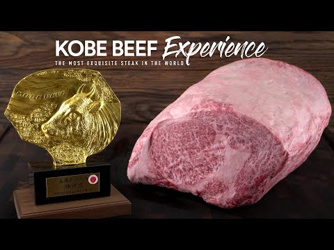 Cooking real A5 KOBE BEEF Wagyu from Japan, It's Insane!