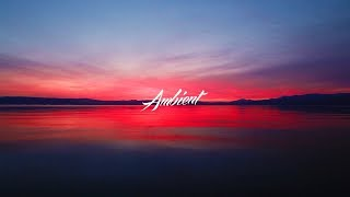 The Ambientalist - There's Always A Way