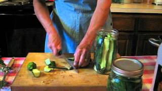 Seed For Security  Refrigerator Dill Pickles