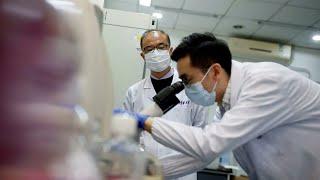 Фото Китай подтвердил готовность поставить в Беларусь вакцину от COVID-19