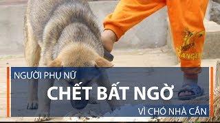 Người phụ nữ chết bất ngờ vì chó nhà cắn | VTC1