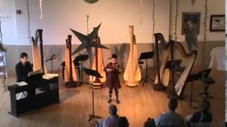 Seitz Concerto #5 - Allegro Moderato