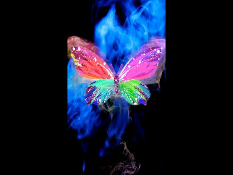 Magic Butterfly Live Wallpaper [Samsung Themes-Animations]