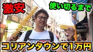 【学生必見】安くて美味しい!コリアンタウンで1万円使い切るまで帰れません!!!! thumbnail