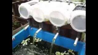 Aquaphonic Pasang Surut