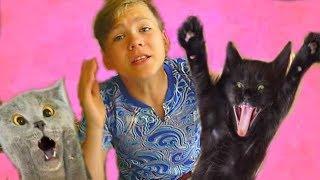 Кошки ПОДРАЛИСЬ и Марфа УБЕЖАЛА в лес РОЖАТЬ КОТЯТ!