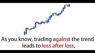 Secret Forex Trading Strategies of Wall Street Revealed!