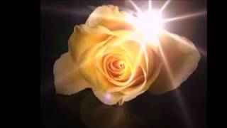 Yellow Roses By Dolly Parton