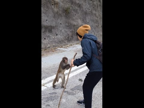January 2014 China Trip