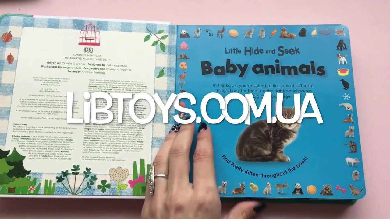 Little Hide and Seek Words | DK UK