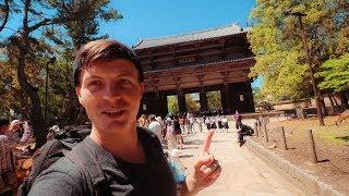 OSAKA to NARA -  Exploring Japan's Ancient Capital