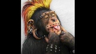 GG4S (Monkey Style) или монолог о Греках
