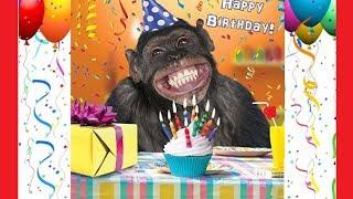 ➤Funny Happy Birthday 🎂🍰🍷🥂Feliz Aniversário Engraçado🎈🎁🎉