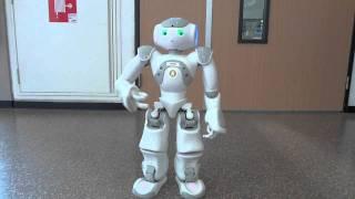 Nao Robot - Naomi - Thriller