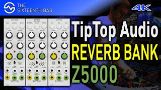 TipTop Audio Z5000 REVERB Effect Bank Sound Demo