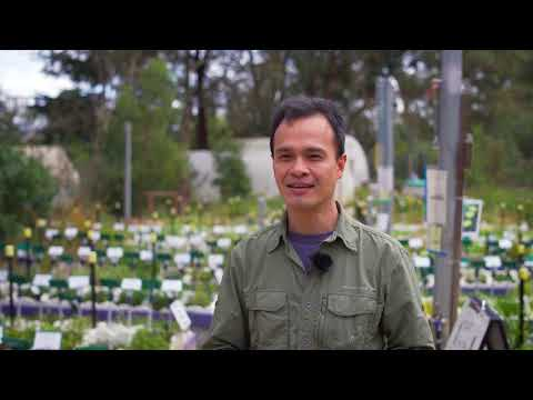 Gardens for Wildlife Victoria: The garden visit