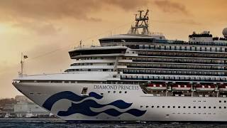 Traces of the coronavirus survived 17 days on surfaces of cruise ship