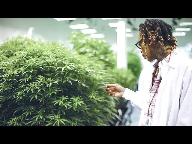 Wiz Khalifa - DayToday: The Right Track
