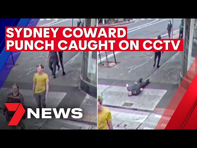 Manhunt underway after Sydney coward punch caught on CCTV | 7NEWS