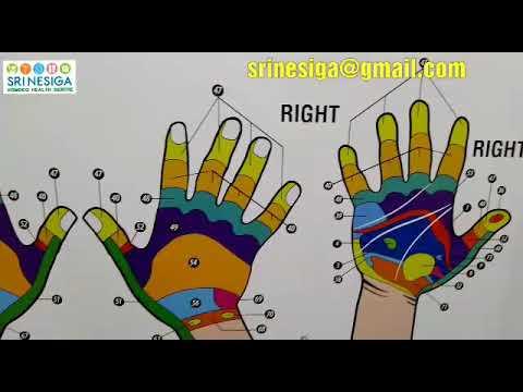 Hand Reflexology Chart Part2