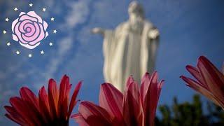 Aparición de la Virgen María - 25/10/2017 (EN VIVO)