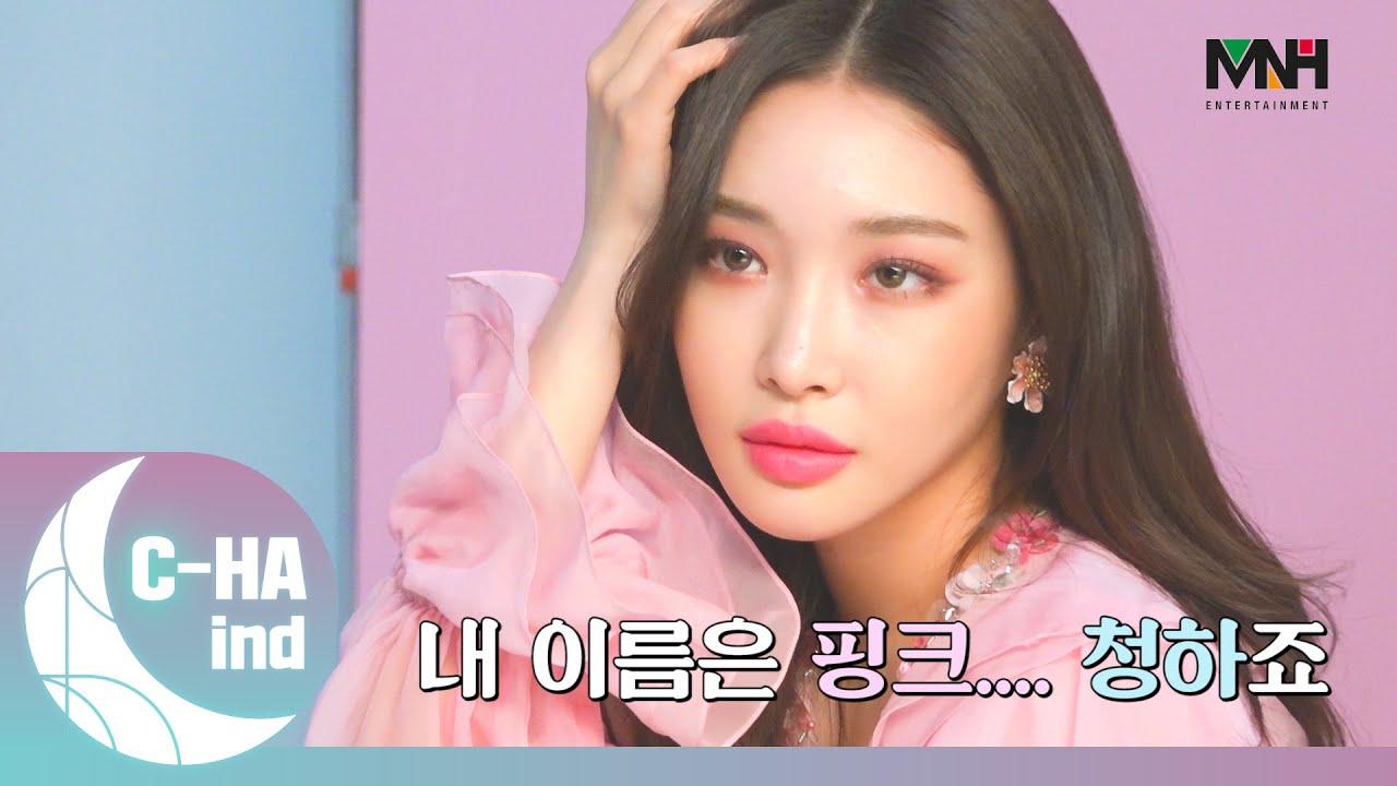 [C-HAind] 내 이름은 핑크....청하죠
