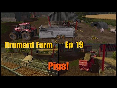 Let's Play Farming Simulator 17 PS4: Drumard Farm, Ep 19 (Pigs!)