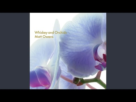 Whiskey and Orchids Mp3