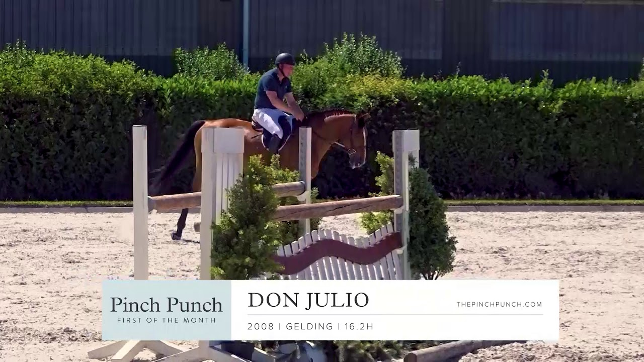 DON JULIO - Profile Video | PPFM: August 2019