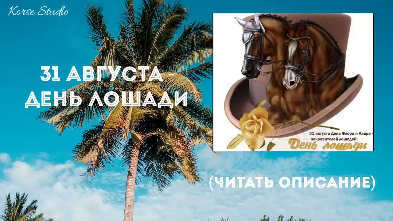 Открытки оренбург, день лошади 31 августа открытки