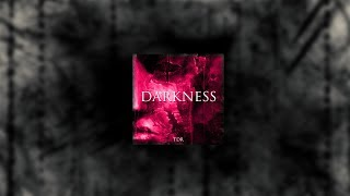 TDR -  Darkness ( Audio )