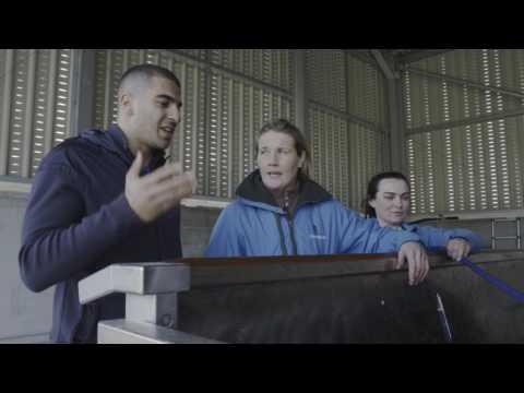 Adam Gemili visits Longholes racehorse rehabilitation centre FULL