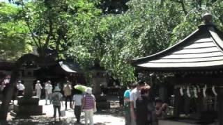 2010.7.17-19 調布市深大寺で鬼燈(ほうずき)まつりが開かれました。「...