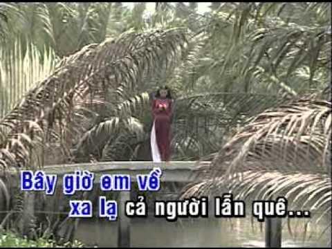 Cây Cầu Dừa Ngọc Sơn