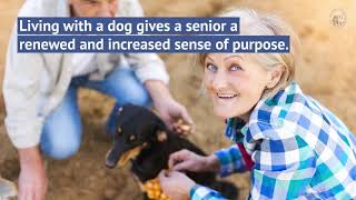 Senior Citizens and Dogs - (800) 721 - 3326 - FIDO