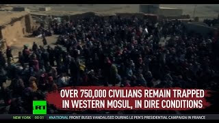 'Everyone fleeing Mosul is treated like potential terror suspect' – HRW Researcher