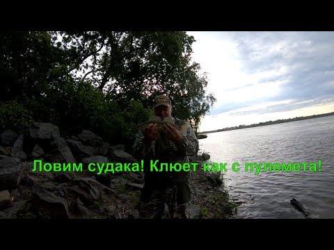 Ловим судака.  ГЭС Новосибирска. Клюет как с пулемета!!!