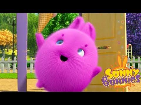 Cartoons for Children | Sunny Bunnies - KNOCK KNOCK | Funny Cartoons For Children
